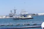 Naval Fleet